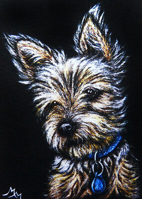 Giclee Print - ACEO Canine Dog YORKIE Pet Animal Scratchboard Art