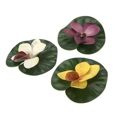 aquanique Floating Lily Pad Variety Pack
