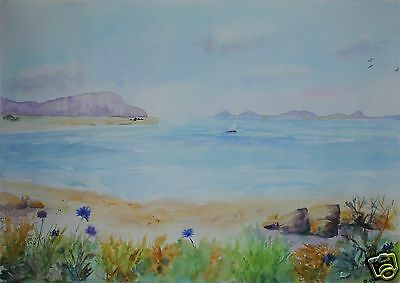 Large Original Watercolour Painting entitled 'Isles of Scilly, with flowers'