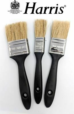 "Harris 3 Piece Paint Brush Set Pure Bristle Wood Stain Varnish DIY 1-2"" Brushes"