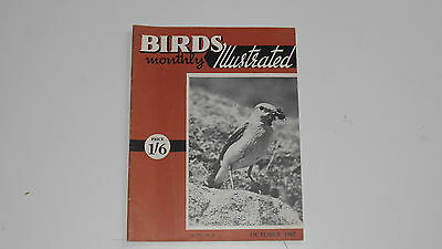 Birds Illustrated Monthly Magazine Volume: XIII Number: 6 OCTOBER 1967 - used