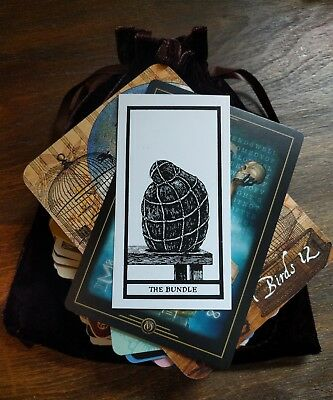 100 Mysterious MAGICAL Lot Tarot/Oracle Cards in a BROWN Velvet Bag OCCULT