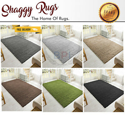 Shaggy Area Rugs Carpets Floor Room Thick Plain Soft Modern Rug 6 Colors 4 Sizes