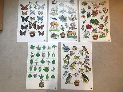 5 SMOKEY THE BEAR ORIGINAL USFS FOREST FIRE PREVENTION POSTERS Large