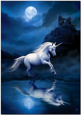 Beautiful Unicorn in Moonlight Horse Canvas Print Poster 18X12""
