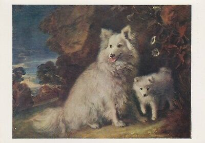 National Gallery, London - Post Card - Gainsborough - Pomeranian Bitch and Puppy