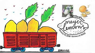 FDC Meyer Lemons #AA ALL NEW FDC For 2018 Hand Painted Cachet by Barnnie