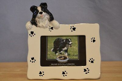 "Border Collie Dog Picture Frame Holds 3 1/2"" x 5"" Photo Montana Silversmiths"