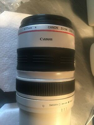 Canon L Series 100-400mm Zoom Lens