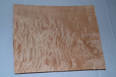 Quilted Maple Raw Wood Veneer Sheets 9.5 x 11 inches 1//42nd thick        E4706-9