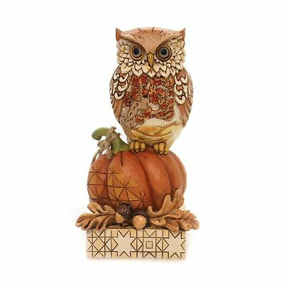Jim Shore Heartwood Creek  6001542 Harvest Owl on Pumpkin Whoo Loves Autumn NEW