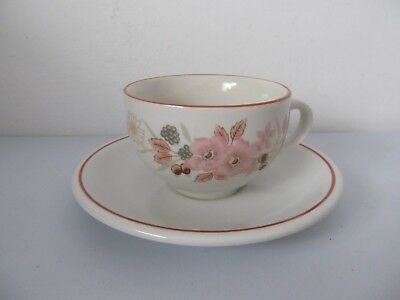 Boots Hedge Rose Cup and Saucer