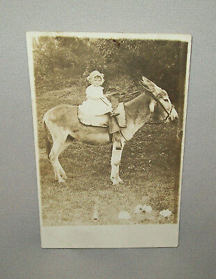 Antique Vtg Ca 1910s Little Girl Riding a Burro Donkey Real Photo Post Card RPPC