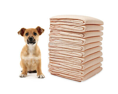 95g Pee Puppy Training Dog Pads Wee Pet Pad Underpads Potty 100 PK Housebreaking
