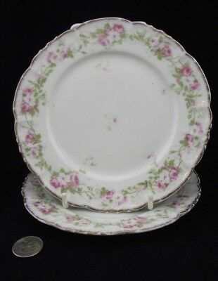 Limoges France Rose Floral Gold Rim Two Bread And Butter Plates