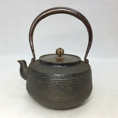 F497: Japanese quality iron kettle TETSUBIN with dot relief ARARE pattern