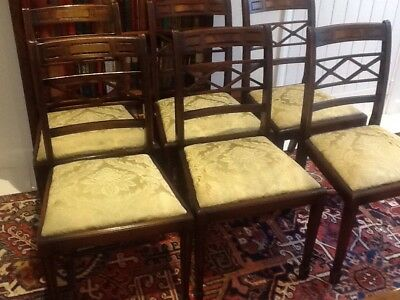 Six Sheraton style Bevan Funnell mahogany Dining Chairs