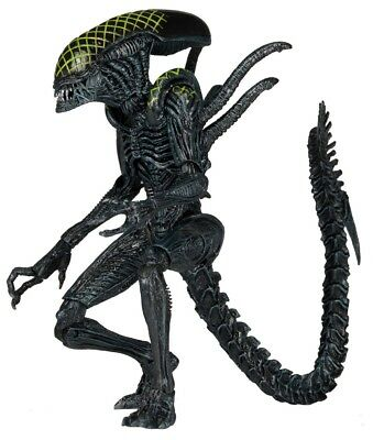 Neca ALIENS Series 7 GRID ALIEN AVP Alien vs Predator Action Figure BN