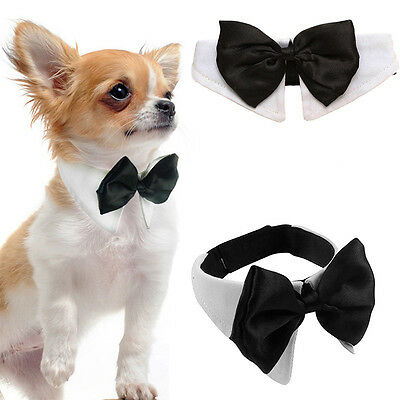 Dog Cat Pet Bow Tie Bowknot Neck Accessory Puppy Dickie Necktie Necklace Collar/