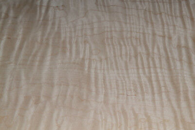Tiger Maple Raw Wood Veneer Sheets 16 x 18.5 inches 1/42nd thick        E4706-38