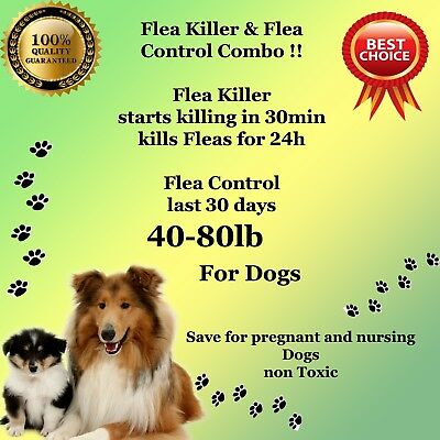 Flea Killer and Control Combo 6+6 instant Killer for large Dogs 40-80lb monthly