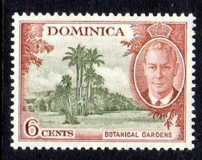 1951 DOMINICA 6c Botanical Gardens SG126 mint unhinged