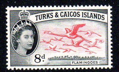 1957 TURKS & CAICOS ISLANDS 8d flamingoes SG245 mint very light hinged