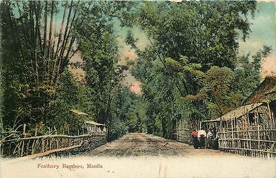sent 1908 PHILIPPINES Postcard MANILA RESIDENTIAL ROAD & Feathery Bamboo P.I