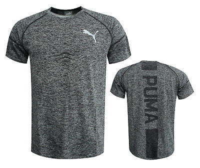 7ccfeb372db Puma Dry cELL Mens Training Vent evoKNIT T-Shirt Black Heather 515628 01  RW72