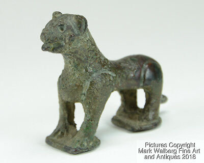 FINE Indian Bronze Figurine of a Lion, Fine Old Patina, 15th to 16th Century