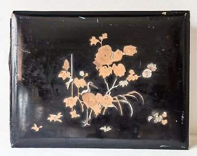 Vintage Japanese lacquered CdV/Cabinet Card photo album with silk pages