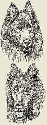 Belgian Sheepdog Dog Graphic SET OF 2 HAND TOWELS EMBROIDERED
