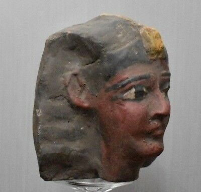 ANCIENT EGYPT ANTIQUE Egyptian HEAD of Ramesses II stone (1300-1200 BC