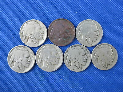 7 Pc U.s. Buffalo Nickel Coin Lot 1913 1916 D 1919 D 1924 D 1924 S 1925 D 1926 D