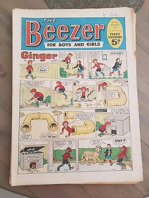 Job Lot Of 13 Vintage Rare Beezer Comics Unfolded Issues 1968
