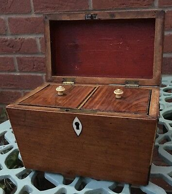 Rare Antique Tulipwood Regency Twin Double Tea Caddy Box