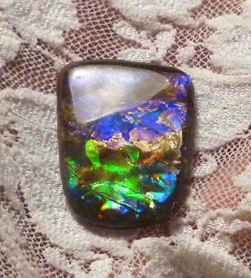 21 Carati! Viola, Blu, Verde Ammolite Finito Gemma 28.5x21.5mm Video