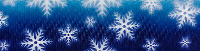 Country Brook Design® 1 Inch Winter Wonderland Polyester Webbing, 50 Yards