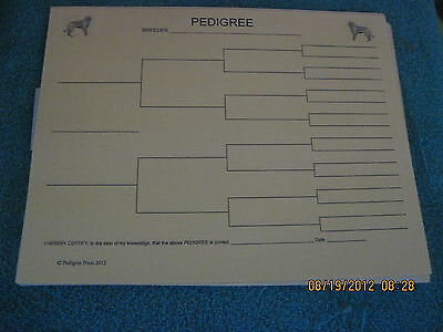 Otterhound Blank Pedigree Sheets Pack 10 FREE SHIPPING IN USA dog