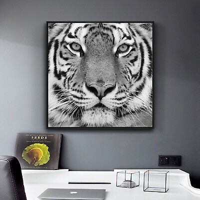 Abstract Art Tiger Black White Paint Silk Canvas Poster Wall Decor Unframed A507