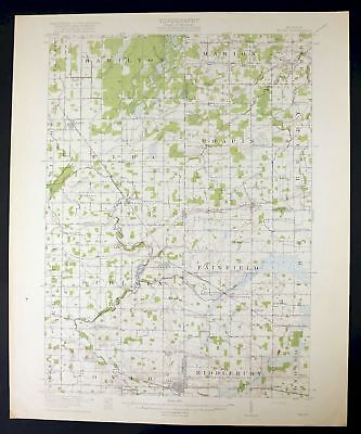 1918 Elsie Michigan Ovid Owosso Antique USGS Topo Topographic Map