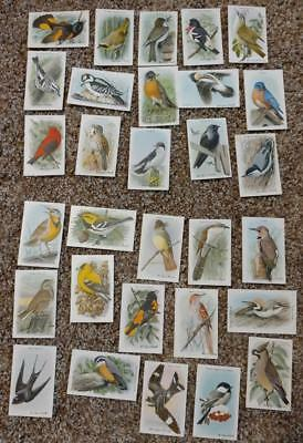 1920's FULL SET OF 30 Arm & Hammer Series 9 & 10 Useful Bird Cards EXCELLENT!