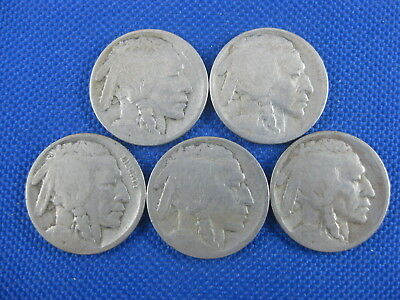 5 Pc U.s. Buffalo Nickel Coin Lot 1913 D Typ I 1913 Typ Ii 1914 S 1916 D 1916 S