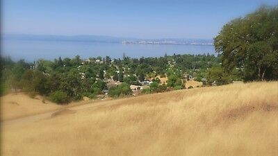 Lake View Land Liquidation - True Auction with No Reserve!
