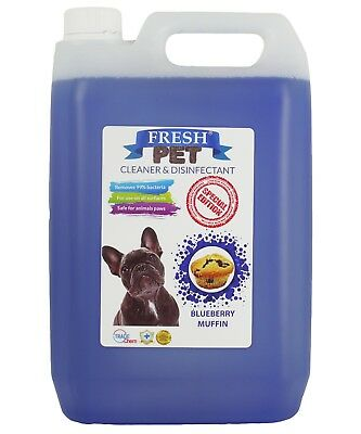 Fresh Pet Kennel Disinfectant Coffee Shop - Prefilled 5L Blueberry Muffin