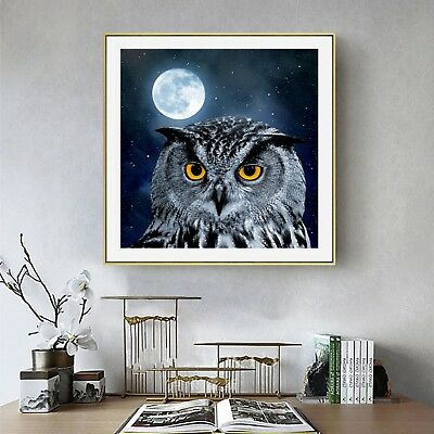 Owl Abstract Art Photo Painting Silk Canvas Poster Wall Decor Unframed A515