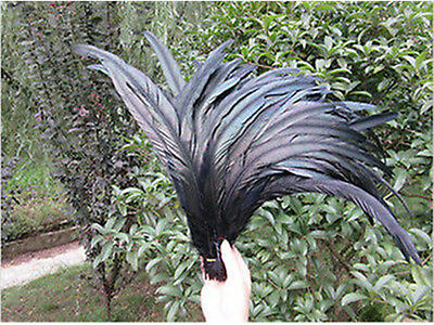 Wholesale 10-500 PCS Beautiful Black Rooster Tail Feathers 10-16inches/25-40cm