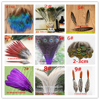 Wholesale Beautiful 10-100pcs natural Pheasant tail turkey peacock feathers DIY