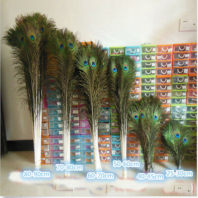 Wholesale 50-200PCS 10-40inches/25-100cm Natural Color Peacock Feathers Eyes
