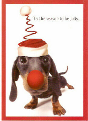 Dachshund Rudolph Christmas Cards - Box of 15
